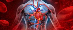 PIONEER-HF - Efeitos da inibição de angiotensina-neprilisina após ICC