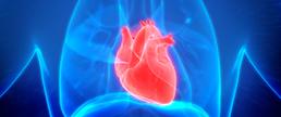 Interleucina-1β e o risco de morte prematura no IAM