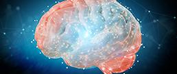 Transtornos Neuropsiquiátricos e a Pandemia: o que mudou?