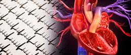 AHA 2020 - RIVER: Anticoagulante em pacientes com FA e bioprótese de valva mitral