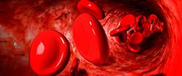 Anticoagulantes orais e o risco de demência em pacientes com fibrilação atrial
