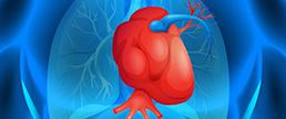 Características clínicas e prognóstico de pacientes com angina microvascular