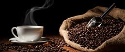 Consumo habitual de café e padrões de conectividade funcional cerebral