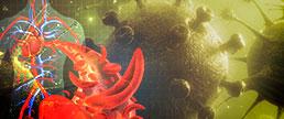 Síndrome Cardiovascular Aguda COVID-19: descrição e manuseio