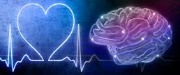 Impacto das doenças mentais nas doenças cardiológicas