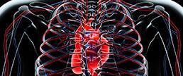 Morte súbita cardíaca em pacientes hipertensos