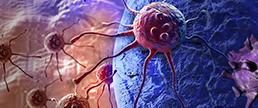 Os anti-hipertensivos estariam ligados a maior risco de câncer?