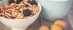 Qualidade dos carboidratos e ingestão de fibras na dieta e seus efeitos na saúde humana