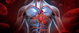 SHORT-DAPT: dupla antiagregação pós angioplastia, qual o tempo ideal?